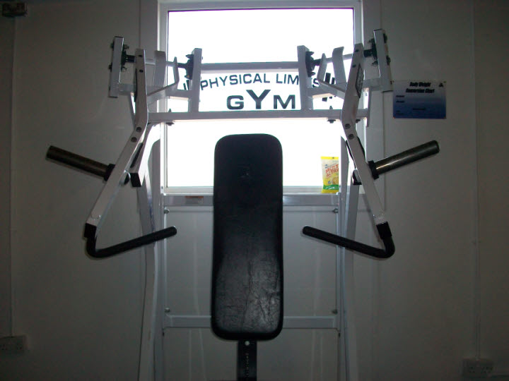 tricep press down plate loaded machine
